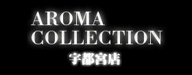 栃木県宇都宮市デリヘルアロマコレクション